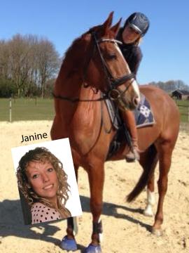 Janine Paard Equinoord DAPMARUM