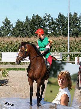 Wieke Paard Equinoord DAPMARUM